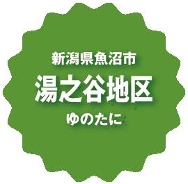 新潟県魚沼市湯之谷地区