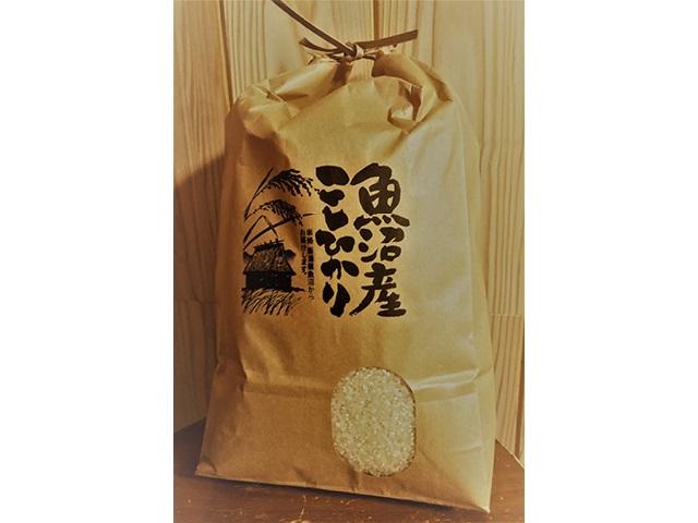 No.8 魚沼産新米コシヒカリ5kg (令和3年度産)